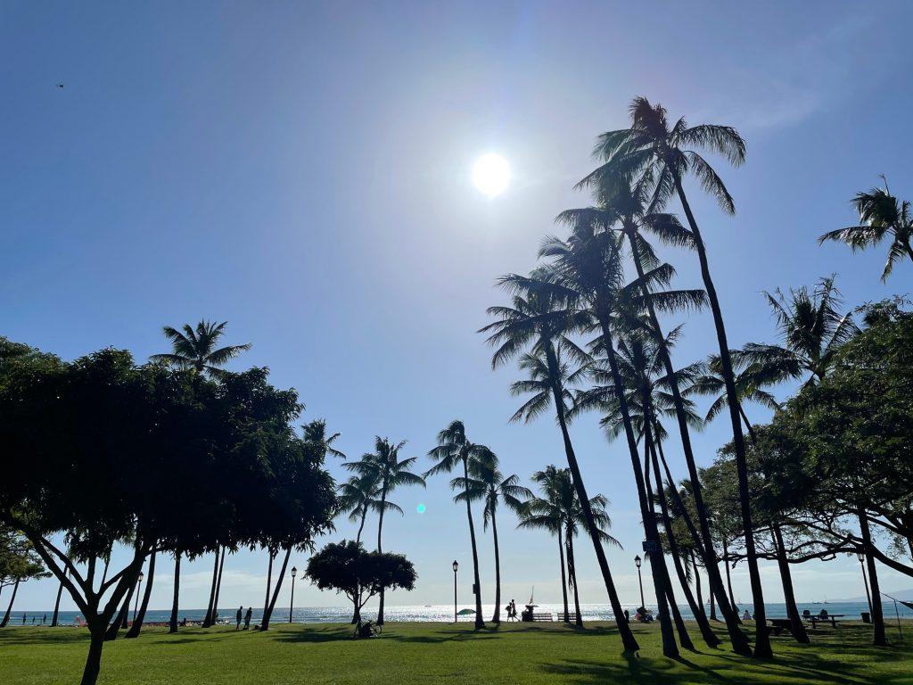 ハワイのリサイクルは簡単です