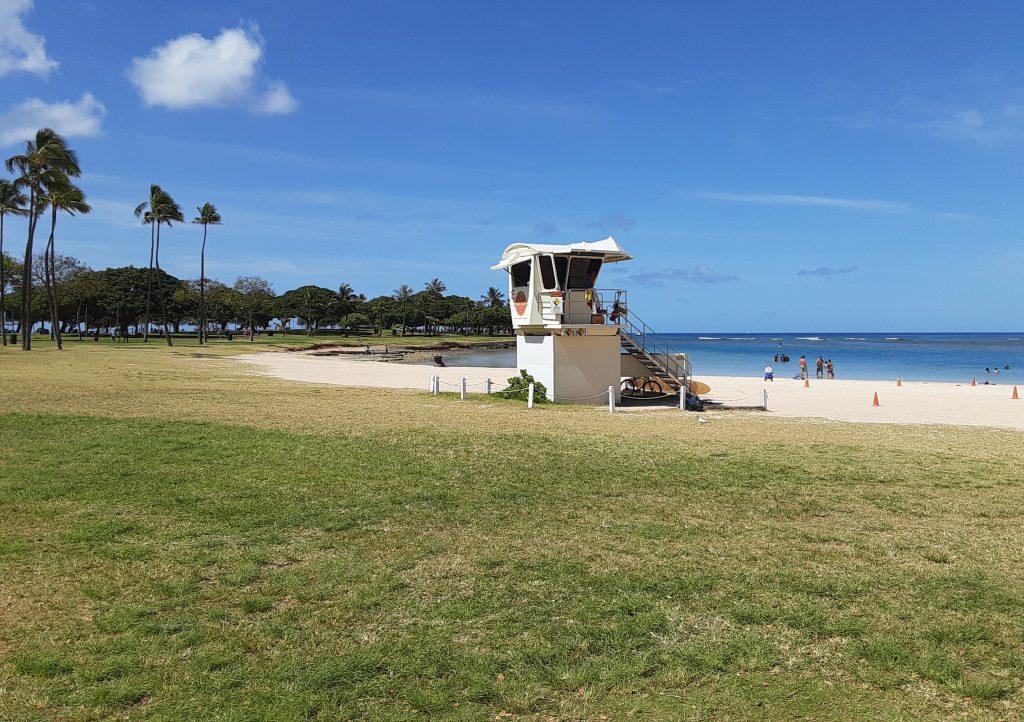 朝のアラモアナビーチパークを散策